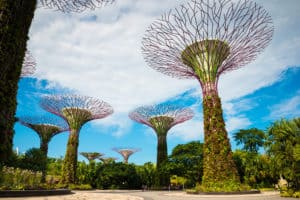 Super trees Gardens by the Bay, Singapore