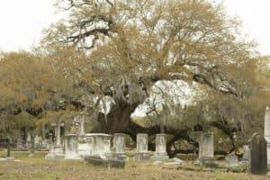 charleston south carolina graveyard