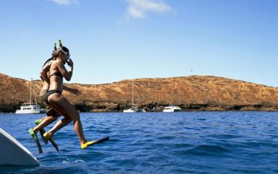 Surprise your client with these unique shore excursions