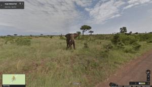 south africa safari virtual tour original