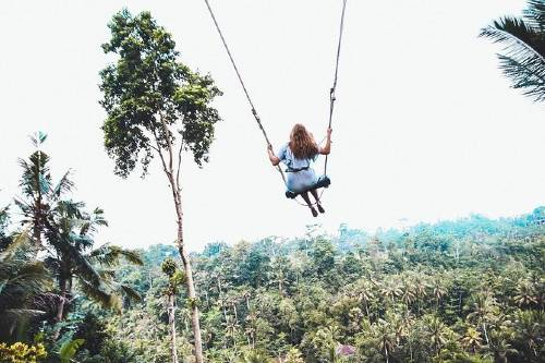 Best of Ubud Tour with Jungle Swing-500x333