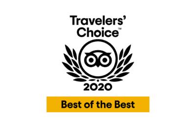 Tripadvisor's and Viator's Top 25 Experiences across the World