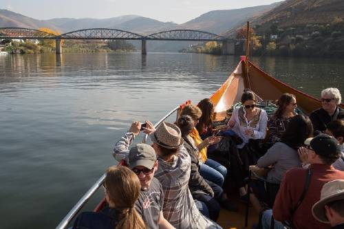 Douro Valley Small-Group Tour with Wine Tasting, and Optional Lunch and Cruise